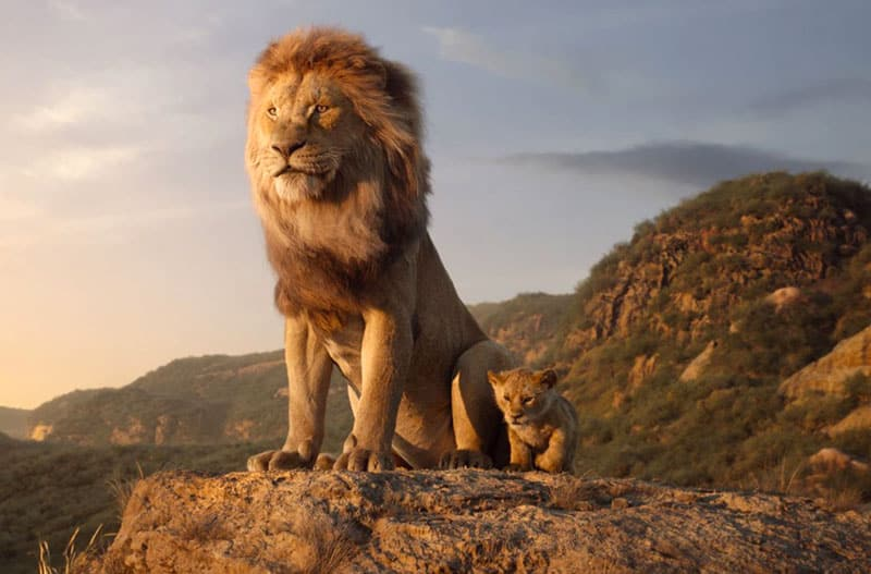 image from the film THE LION KING (2019)